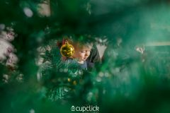 15Christmas-minisession-Cupclick